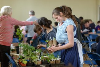 Woman with baby looks at plants at a community event