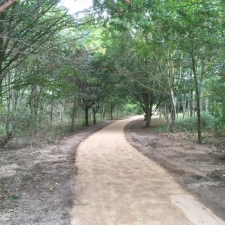 Newly laid path around the Greenway