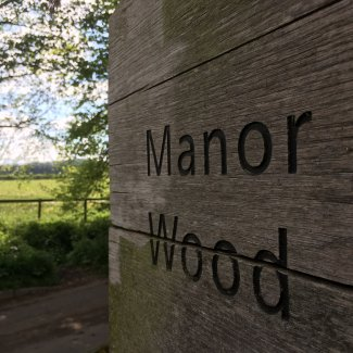 Manor Wood