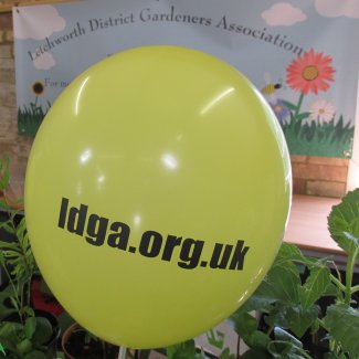 A yellow balloon with the words ldga.org.uk printed on it